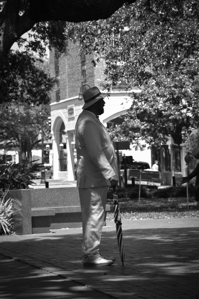Gids Savannah 2017